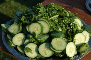 Cucumbers with Herbs and Vinegar 3