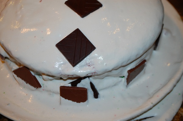 Wrecked Christmas Cake 3